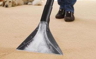 Carpet Cleaning from New Penny Cleaning