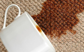 Hook Carpet Stain Removal
