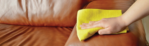Upholstery cleaning sofas and chairs